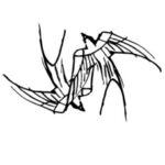 Profilový obrázek statekkeseg