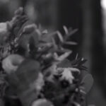 Profilový obrázek Svatba cernobile